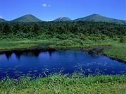 Suiren Marsh, Aomori prefecture, Japan