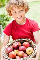 Boy holding basket of apples (thumbnail)