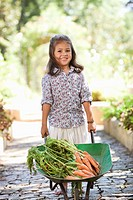 Cute girl pushing a wheelbarrow filled with carrots