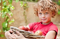 Boy holding basket of apples