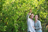 Mature couple picking fruits in a garden