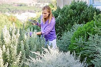 Young woman looking at plants with cutter in hand