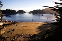 Tranquil beach on Stewart Island, New Zealand