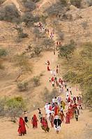 India, Rajasthan, Mukam surroundings, Jambeshwar festival, Bishnoi pilgrims climbing Samrathal dune.