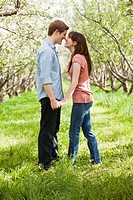 USA, Utah, Provo, Young couple face to face in orchard