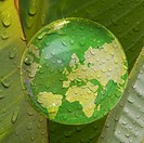 Map of earth reflected in droplet of water on plant leaf
