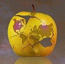 World map on fractured apple