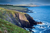 Landscape  Slea Head Road  Dingle Peninsula  County Kerry  Ireland