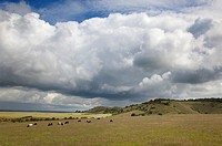 Ivinghoe Beacon Chilterns Buckinghamshire