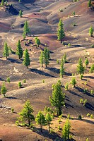 Fantastic Lava Flow from Cinder Cone, Lassen Volcanic National Park, California, USA