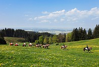 Germany, Bavaria, Upper Bavaria, Allgaeu, Bernbeuren, Auerberg, People riding horse at George´s Ride