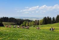 Germany, Bavaria, Upper Bavaria, Allgaeu, Bernbeuren, Auerberg, People riding horse at George´s Ride