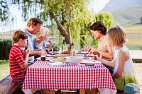 Multi generation family having a picnic