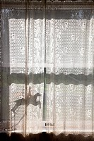 Shadow Through Lace Curtains