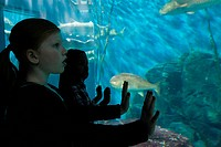 Girls staring at fish in aquarium