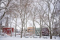Snowy McGolrick Park after blizzard