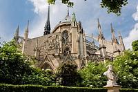 Back view Notre Dame Cathedral, Paris, France