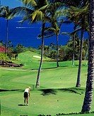 Golf courses with the ocean view. Hawaii, Maui, USA