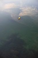 Lone Buoy in the Water
