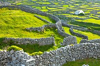 Inisheer Island - Inis Oirr  Aran Islands, Galway County, West Ireland, Europe