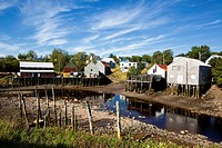 Low tide, Seal Cove, Grand Manan Island, Bay of Fundy, New Brunswick, Canada