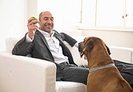 Businessman sitting on sofa, playing with dog