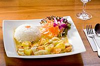 Germany, Bavaria, Munich, Close up of thai dish with boiled rice