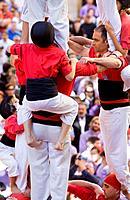 Nens del Vendrell ´Castellers´ building human tower, a Catalan tradition Fira de Santa Teresa, town festival  Plaça Vella El Vendrell Tarragona provin...