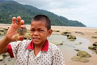 Photo of a Little Asian Boy showing a small crab in a malay fishing village, Borneo