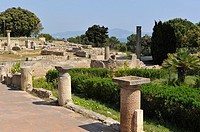 Roman part of the archeological site of Empuries, Costa Brava, Catalonia, Spain, Europe