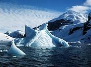 Antarctica - Antarctic Peninsula - Paradise Bay. Iceberg