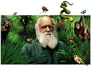 Charles Darwin 1809_1882, British naturalist. Darwin had briefly studied medicine and then trained in the clergy, but his interest was in natural hist...