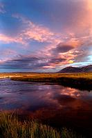 Owens River curving through grassy flatlands with beautiful pink clouds reflected in the water, on a summer evening