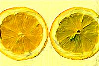 Slices of lemon, close up, white background