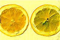 Slices of lemon, close up, white background