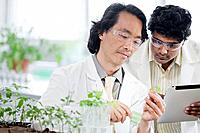 Two male scientists working with plants in laboratory