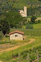 Sant Antimo, Montalcino, Castelnuovo dell´abate, Tuscany landscape, Siena Province, Tuscany, Italy