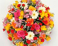 Flower bouquet, white background