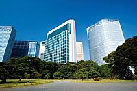 A garden and the Shiodome building group in Minato, Tokyo, Japan