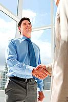 Two businessmen shaking hands in office (thumbnail)