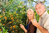 Couple by fruit tree