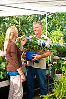 Couple choosing plants in garden centre