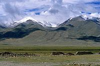 Route from Llasa to Golmud in China. Road trip. Scenery in Tibet. Plateau. Flat land. Valley. Green pasture. Grazing. Snow capped mountains. Steep slo...