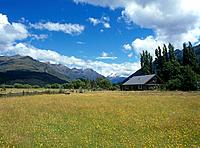 The Southern Alps range of the West coast of the South Island has wide open spaces with wild flowers and pasture. It is an area of great natural beaut...