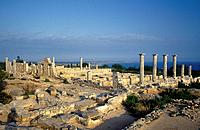 Sanctuary of Apollo Hylates. Extensive pilgrim quarters. Xenon. Floor plan. Raised walls. Columns. View of sea.