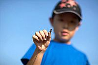 Boy holding dragonfly, blue background, differential focus