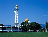 State Mosque. Tall white tower/ minaret with gold dome on top. Second dome behind trees. Grass.