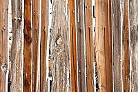 Close view of planks in a fence.