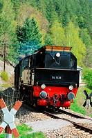 Steam locomotive BR94