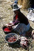 Woman seated outside thatched reed house. Traditional clothes,hat. Preparing duck carcasses for food.